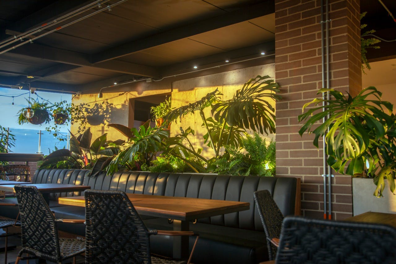 100 Residents | San Felipe | Modern & Comfortable Studio w/ Rooftop Bar + Gym + Coworking