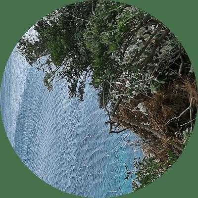 정수현 - Coliving Profile