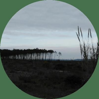 hllda - Coliving Profile