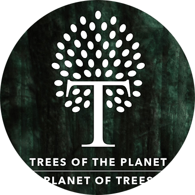 Trees P - Coliving Profile