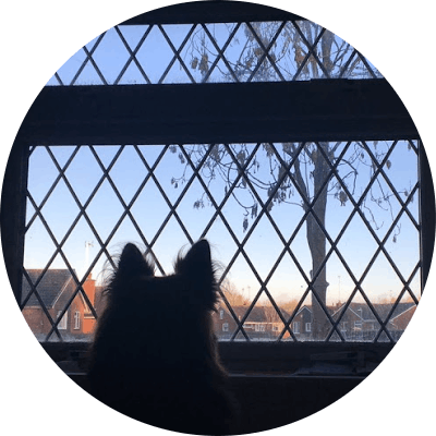Tay - Coliving Profile